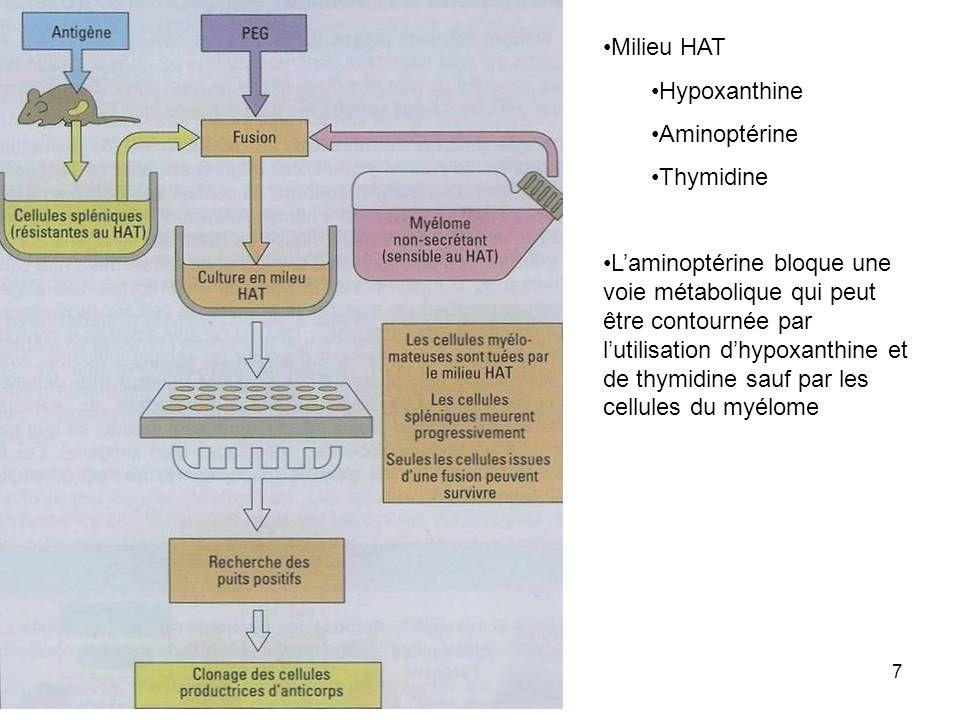 7 Milieu HAT Hypoxanthine Aminoptérine Thymidine Laminoptérine bloque une voie métabolique qui peut être contournée par lutilisation dhypoxanthine et