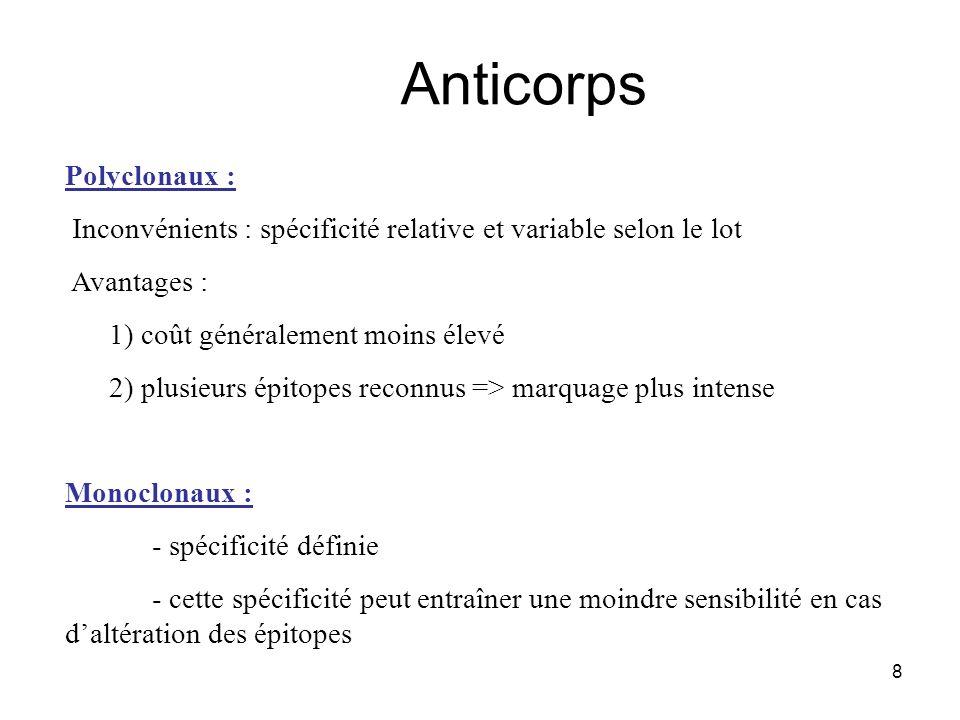 8 Anticorps Polyclonaux : Inconvénients : spécificité relative et variable selon le lot Avantages : 1) coût généralement moins élevé 2) plusieurs épit