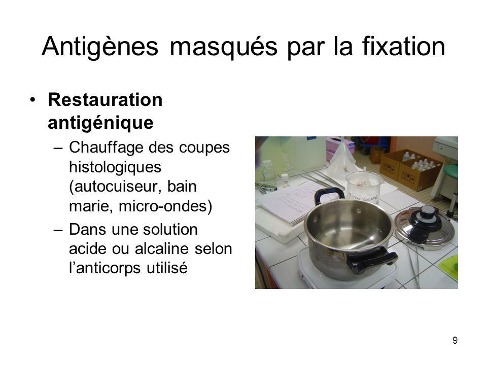 9 Antigènes masqués par la fixation Restauration antigénique –Chauffage des coupes histologiques (autocuiseur, bain marie, micro-ondes) –Dans une solu