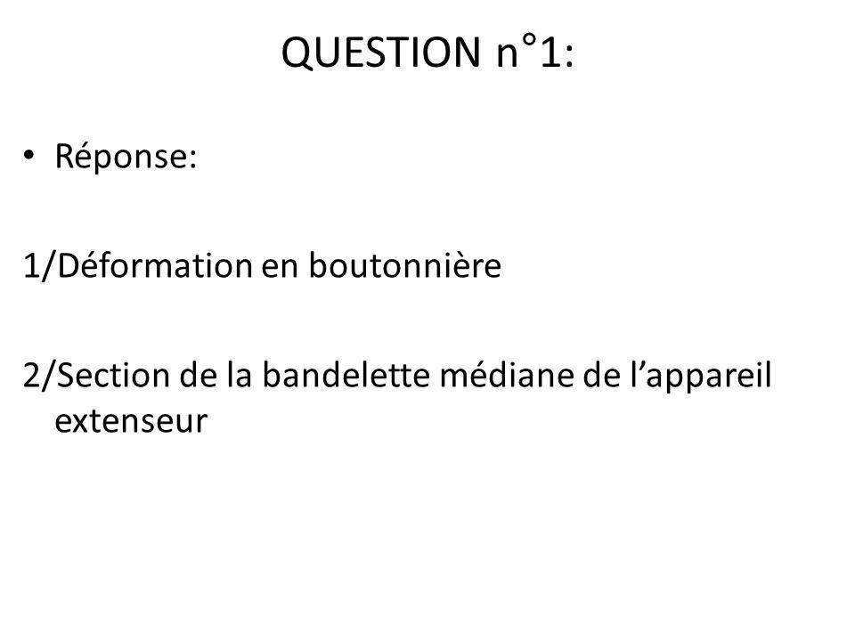 QUESTION n°1: Réponse: 1/Déformation en boutonnière 2/Section de la bandelette médiane de lappareil extenseur
