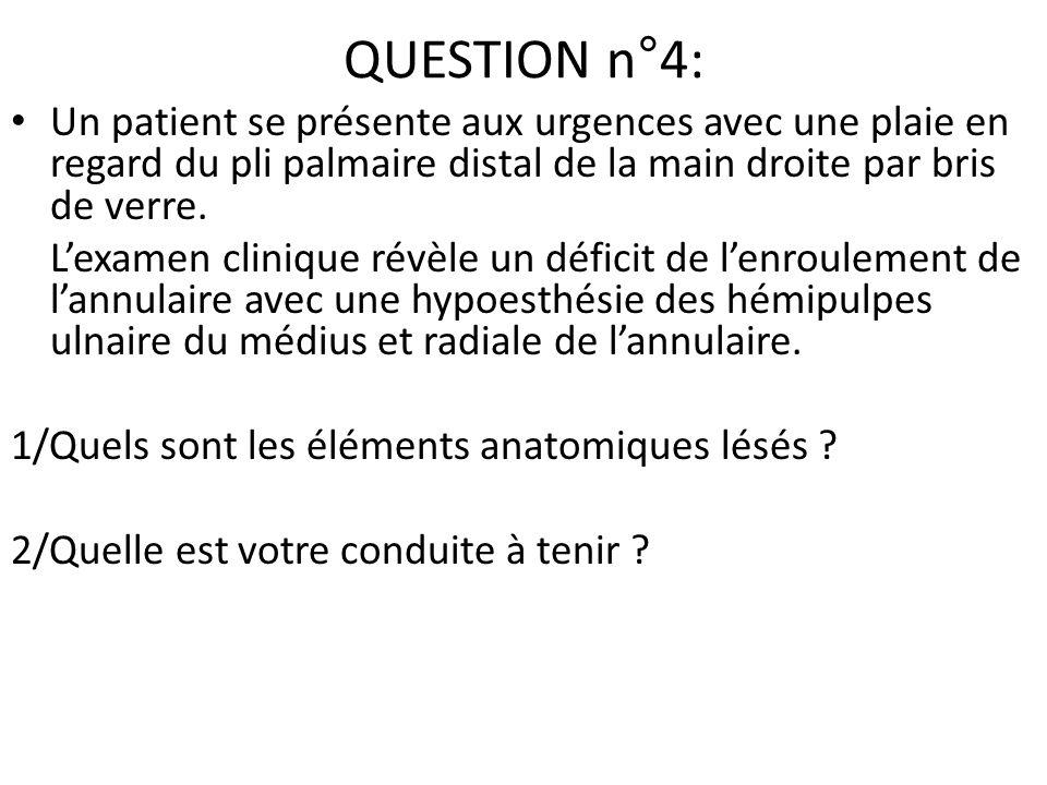 QUESTION n°4: Un patient se présente aux urgences avec une plaie en regard du pli palmaire distal de la main droite par bris de verre. Lexamen cliniqu