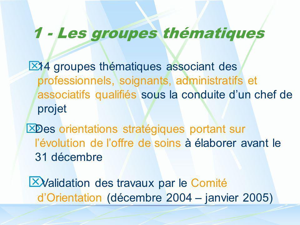 1 - Les groupes thématiques 14 groupes thématiques associant des professionnels, soignants, administratifs et associatifs qualifiés sous la conduite d