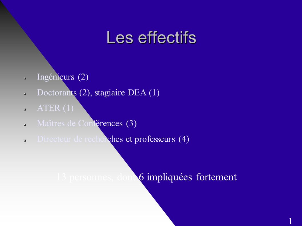 Les effectifs Ingénieurs (2) Doctorants (2), stagiaire DEA (1) ATER (1) Maîtres de Conférences (3) Directeur de recherches et professeurs (4) 13 personnes, dont 6 impliquées fortement 1