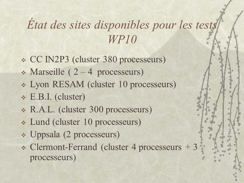 État des sites disponibles pour les tests WP10 CC IN2P3 (cluster 380 processeurs) Marseille ( 2 – 4 processeurs) Lyon RESAM (cluster 10 processeurs) E