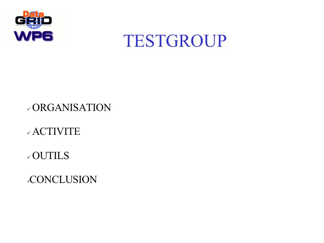 TESTGROUP ORGANISATION ACTIVITE OUTILS CONCLUSION