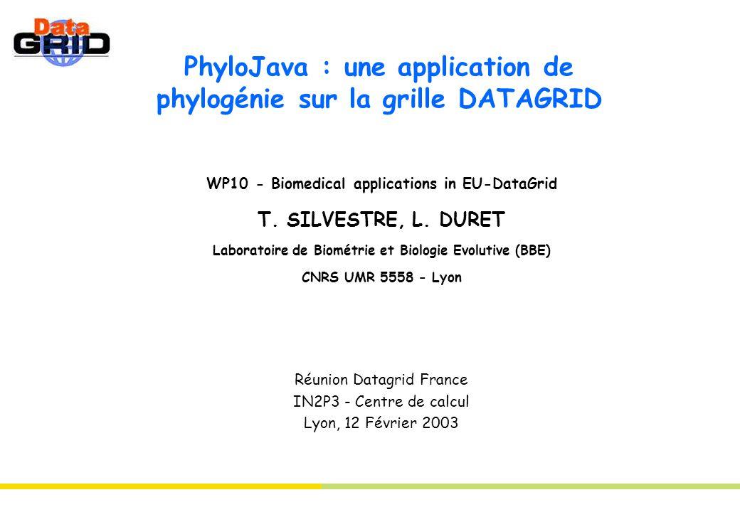 PhyloJava : une application de phylogénie sur la grille DATAGRID WP10 - Biomedical applications in EU-DataGrid T. SILVESTRE, L. DURET Laboratoire de B