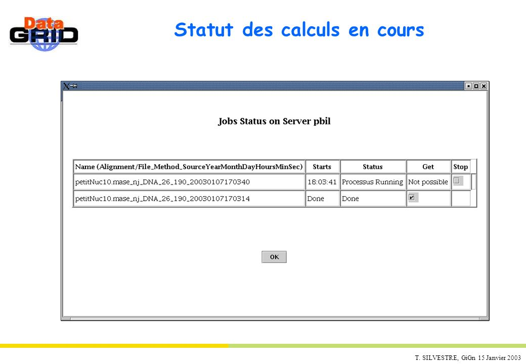 T. SILVESTRE, GiGn 15 Janvier 2003 Statut des calculs en cours