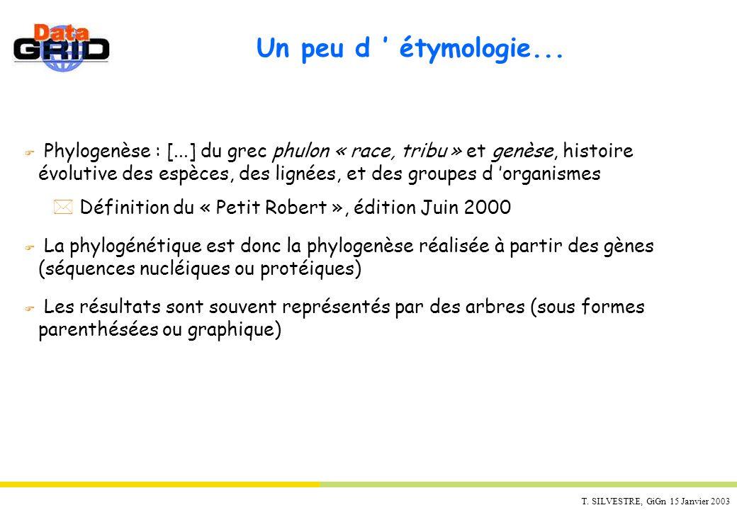 T. SILVESTRE, GiGn 15 Janvier 2003 Un peu d étymologie... F Phylogenèse : [...] du grec phulon « race, tribu » et genèse, histoire évolutive des espèc