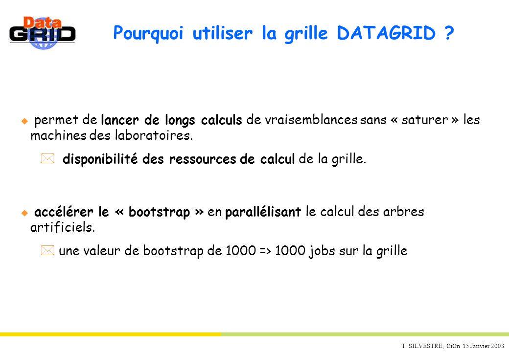 T. SILVESTRE, GiGn 15 Janvier 2003 Pourquoi utiliser la grille DATAGRID ? u permet de lancer de longs calculs de vraisemblances sans « saturer » les m