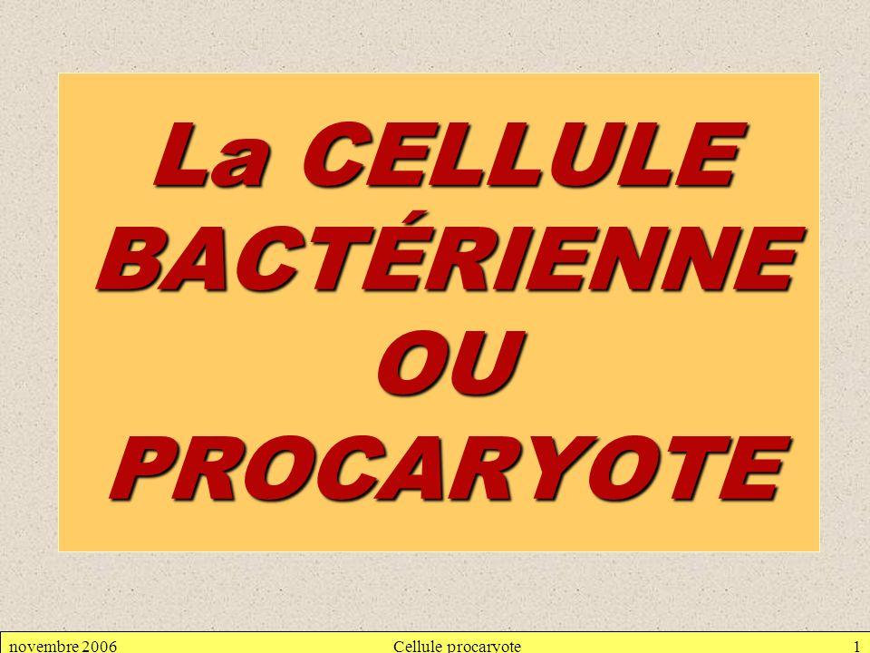 novembre 2006Cellule procaryote62 Composition chimique de la spore : Pauvreté en eau Accumulation de dipicolinate de calcium : 10 % de la masse Propriétés de la spore : Capacité de germer Résistances à de nombreux agents chimiques (Imperméabilité) Résistance à la chaleur (jusquà 120°C)