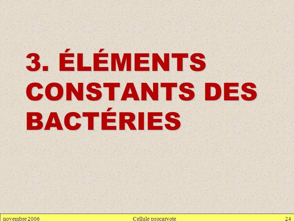 novembre 2006Cellule procaryote24 3. ÉLÉMENTS CONSTANTS DES BACTÉRIES