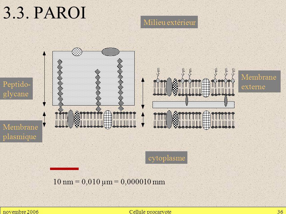 novembre 2006Cellule procaryote36 3.3. PAROI Peptido- glycane Membrane plasmique cytoplasme Milieu extérieur Membrane externe 10 nm = 0,010 µm = 0,000