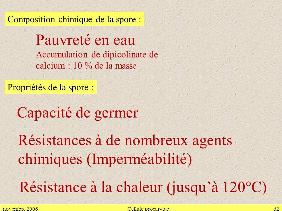 novembre 2006Cellule procaryote62 Composition chimique de la spore : Pauvreté en eau Accumulation de dipicolinate de calcium : 10 % de la masse Propri