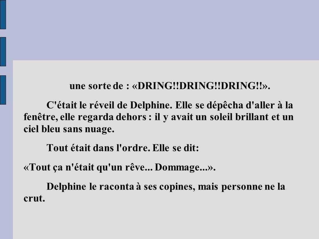 une sorte de : «DRING!!DRING!!DRING!!». C'était le réveil de Delphine. Elle se dépêcha d'aller à la fenêtre, elle regarda dehors : il y avait un solei