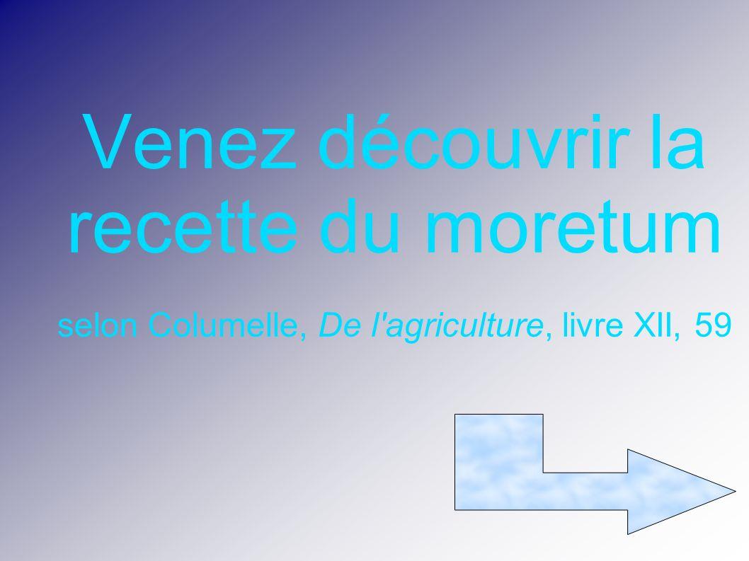 Venez découvrir la recette du moretum selon Columelle, De l'agriculture, livre XII, 59
