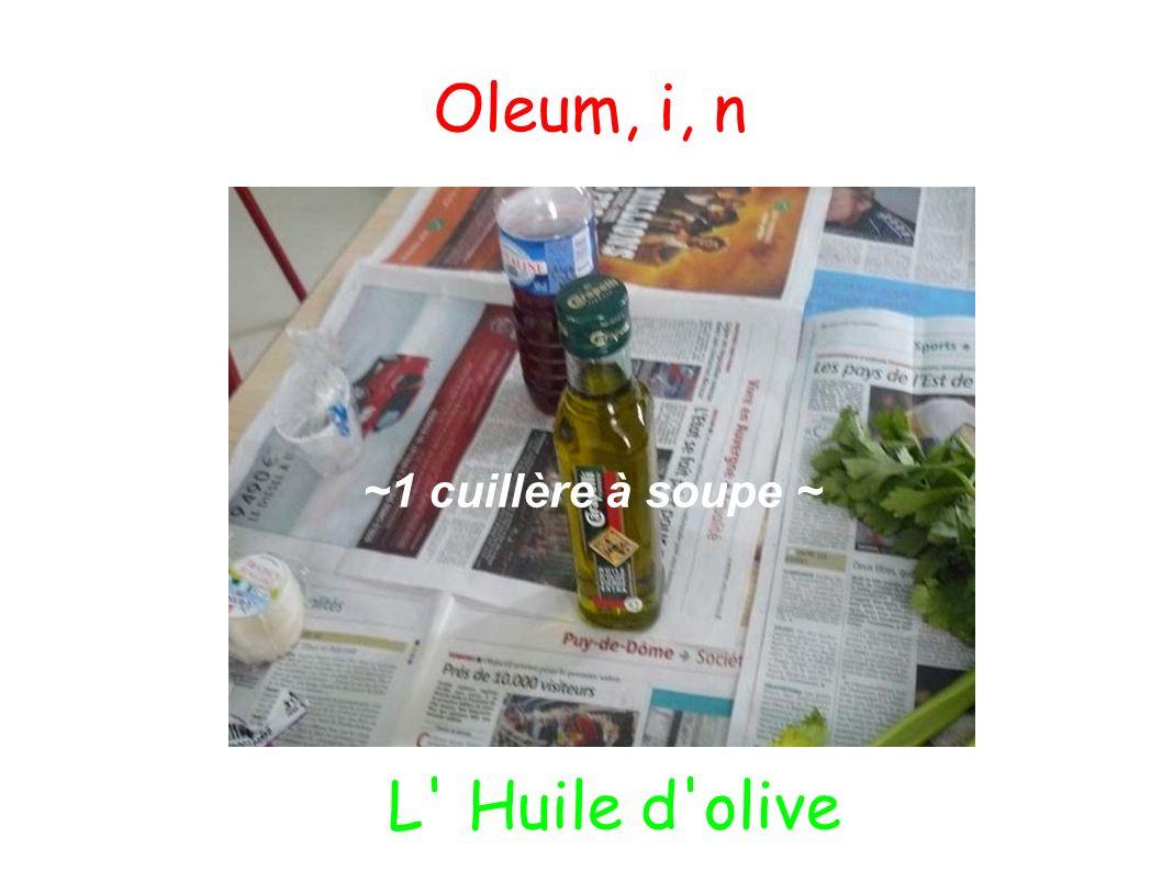Oleum, i, n ~1 cuillère à soupe ~ L' Huile d'olive