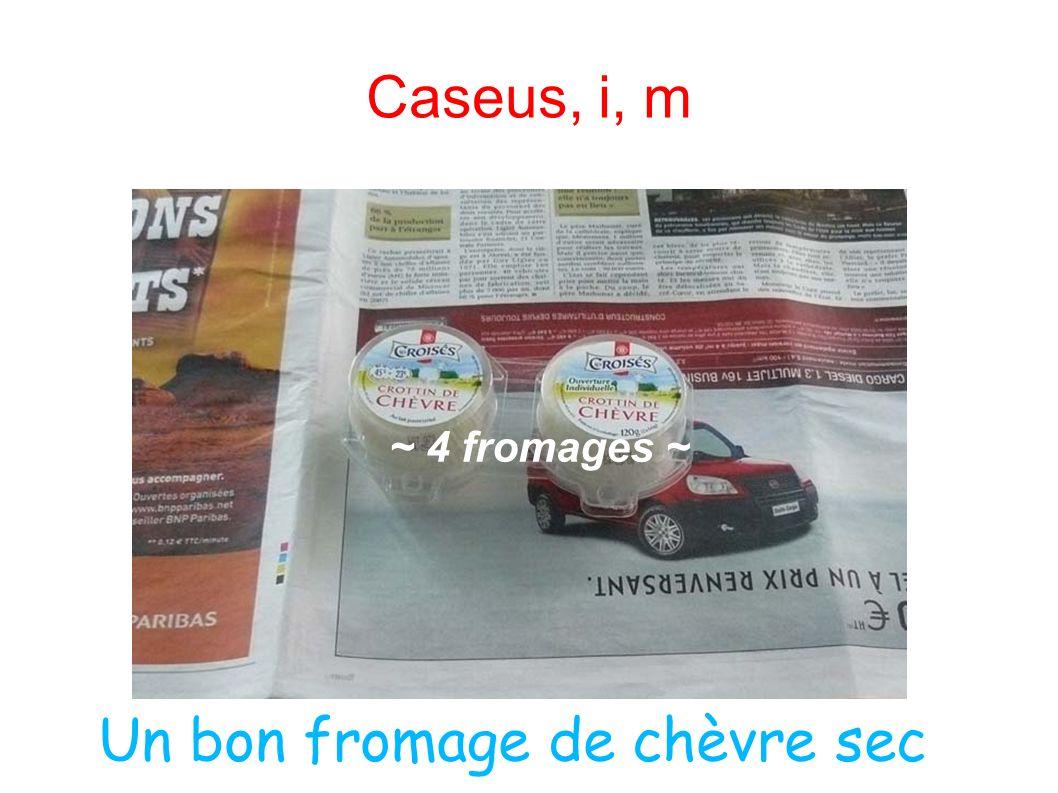 Caseus, i, m ~ 4 fromages ~ Un bon fromage de chèvre sec