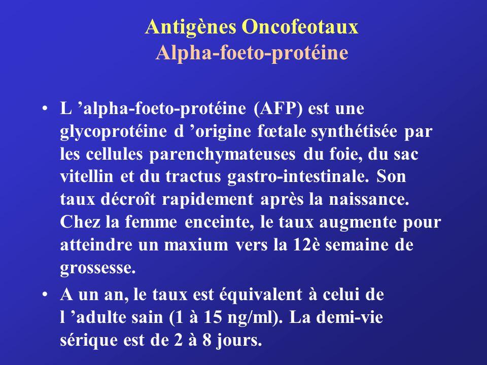 Antigènes Oncofeotaux Alpha-foeto-protéine L alpha-foeto-protéine (AFP) est une glycoprotéine d origine fœtale synthétisée par les cellules parenchyma