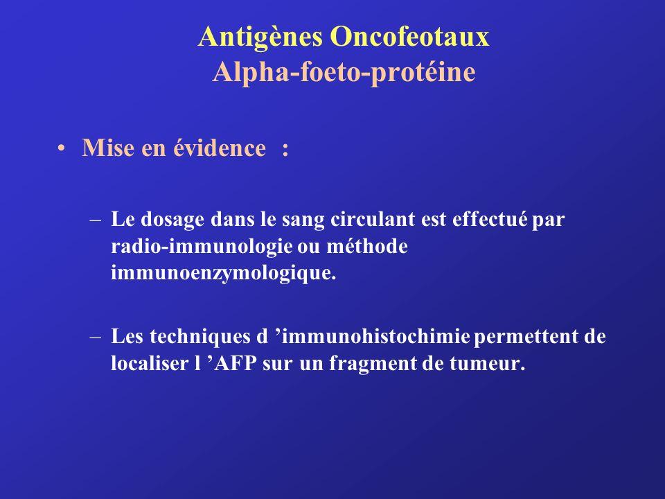Antigènes Oncofeotaux Alpha-foeto-protéine Mise en évidence : –Le dosage dans le sang circulant est effectué par radio-immunologie ou méthode immunoen
