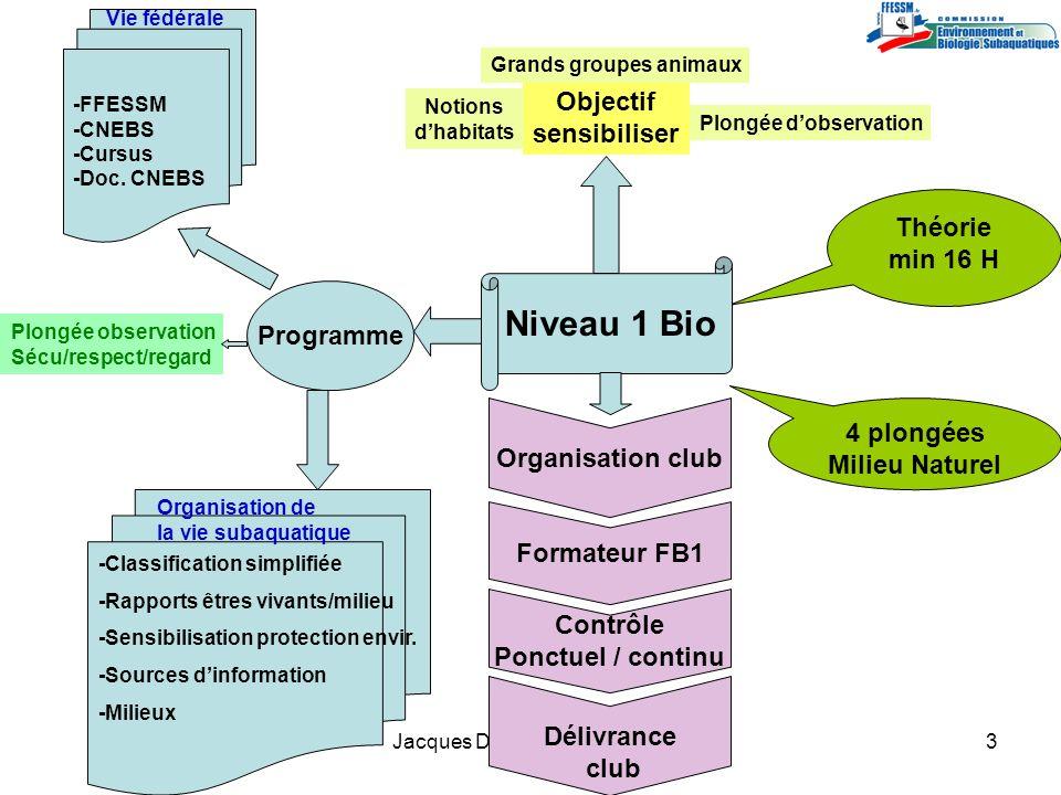 Jacques Dumas / INBS / 20113 Objectif sensibiliser Théorie min 16 H 4 plongées Milieu Naturel Organisation club Formateur FB1 Contrôle Ponctuel / cont