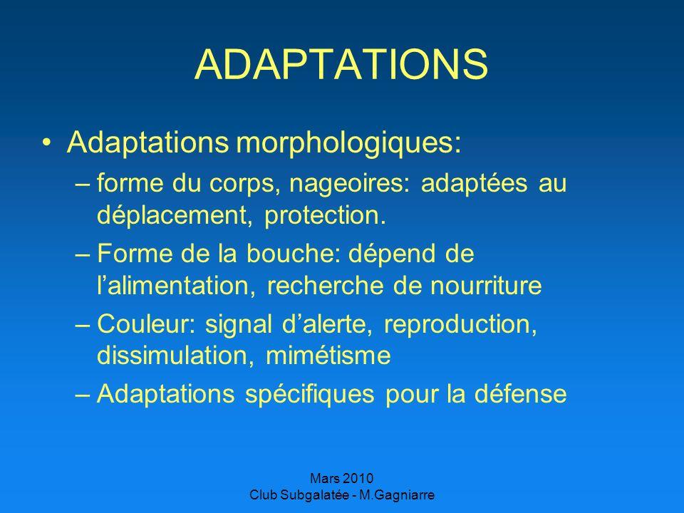 Mars 2010 Club Subgalatée - M.Gagniarre ADAPTATIONS Adaptations morphologiques: –forme du corps, nageoires: adaptées au déplacement, protection. –Form