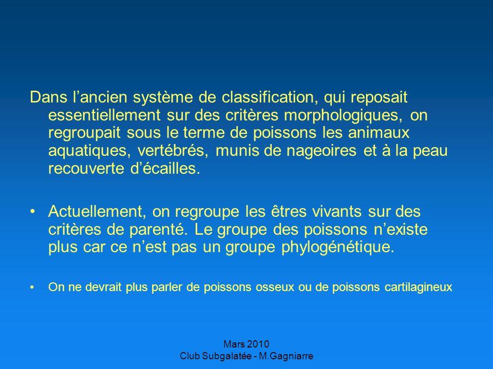 Mars 2010 Club Subgalatée - M.Gagniarre ADAPTATIONS Adaptations morphologiques: –forme du corps, nageoires: adaptées au déplacement, protection.