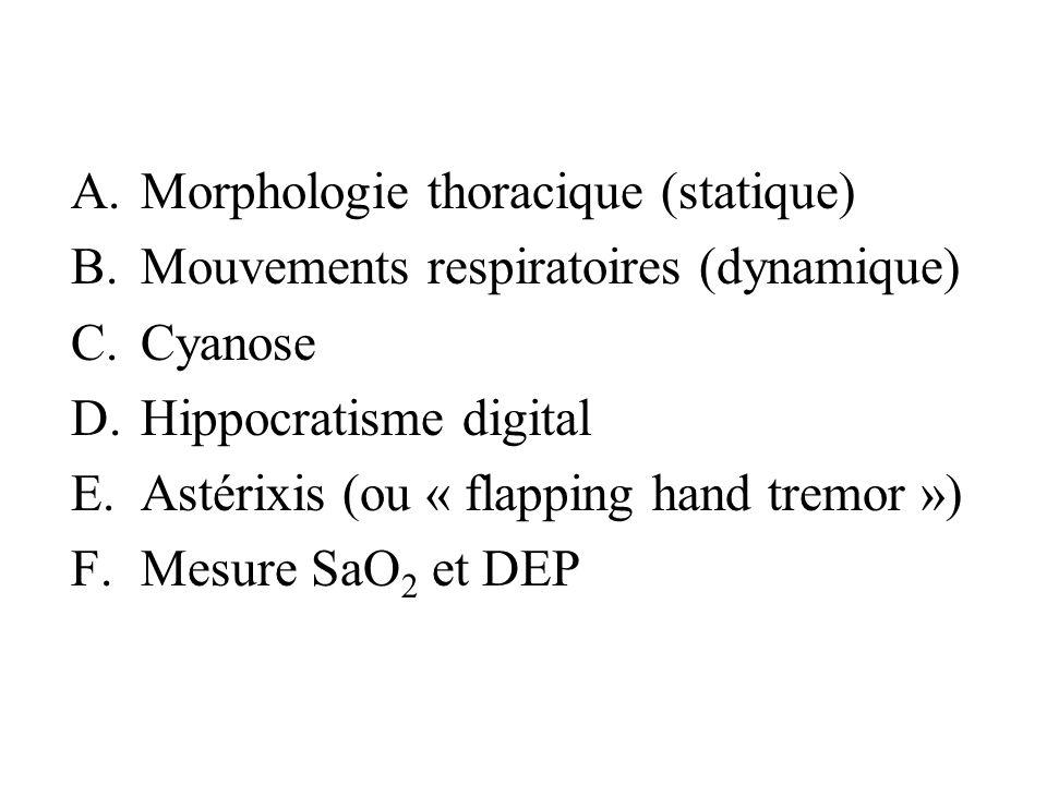 A.Morphologie thoracique (statique) B.Mouvements respiratoires (dynamique) C.Cyanose D.Hippocratisme digital E.Astérixis (ou « flapping hand tremor »)