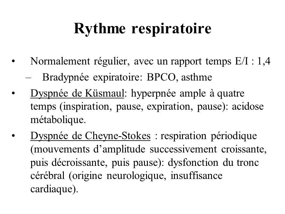 Normalement régulier, avec un rapport temps E/I : 1,4 –Bradypnée expiratoire: BPCO, asthme Dyspnée de Küsmaul: hyperpnée ample à quatre temps (inspira