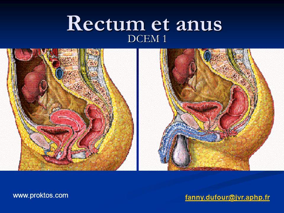 Rectum et anus DCEM 1 fanny.dufour@jvr.aphp.fr www.proktos.com
