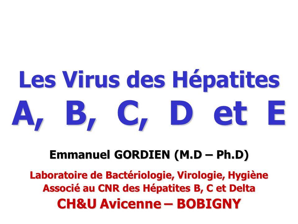 Les Virus des Hépatites A, B, C, D et E Emmanuel GORDIEN (M.D – Ph.D) Laboratoire de Bactériologie, Virologie, Hygiène Associé au CNR des Hépatites B,