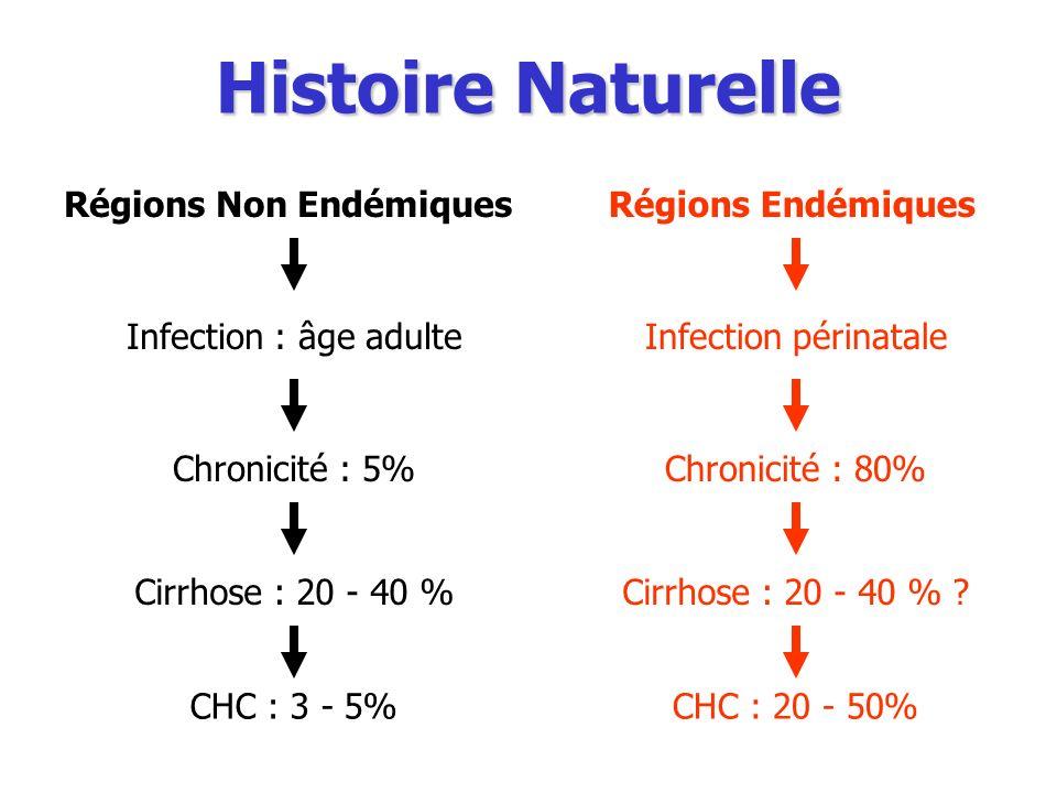 Histoire Naturelle Régions Non EndémiquesRégions Endémiques Infection : âge adulteInfection périnatale Chronicité : 5%Chronicité : 80%Cirrhose : 20 -