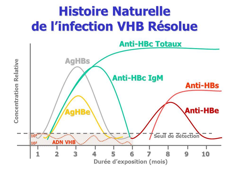 10 2 10 9 Seuil de détection Anti-HBe Anti-HBs AgHBs Anti-HBc IgM Anti-HBc Totaux AgHBe Concentration Relative Durée dexposition (mois) 1 2 3 4 5 6 7