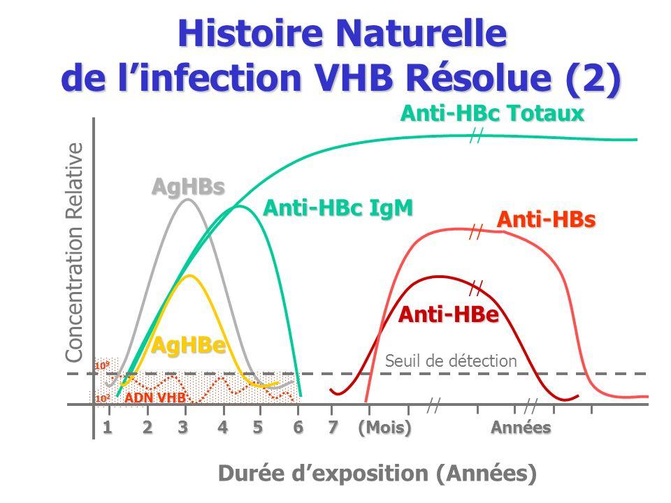 10 2 10 9 Seuil de détection Anti-HBeAgHBs Anti-HBc IgM Anti-HBc Totaux AgHBe Concentration Relative Durée dexposition (Années) 1 2 3 4 5 6 7 (Mois) A