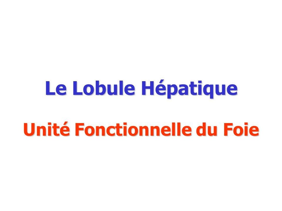 Le Lobule Hépatique Unité Fonctionnelle du Foie