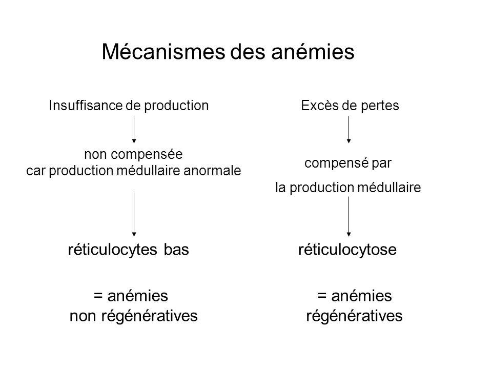 Mécanismes des anémies Excès de pertesInsuffisance de production compensé par la production médullaire = anémies régénératives non compensée car produ