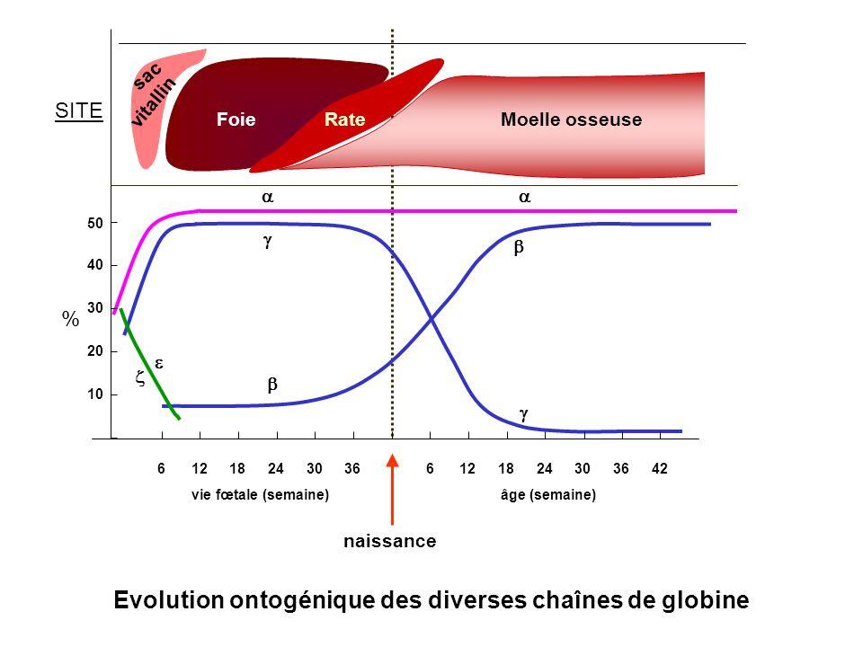 % FoieRateMoelle osseuse sac vitallin 612241836306122418363042 vie fœtale (semaine)âge (semaine) 10 20 30 40 50 naissance SITE Evolution ontogénique d