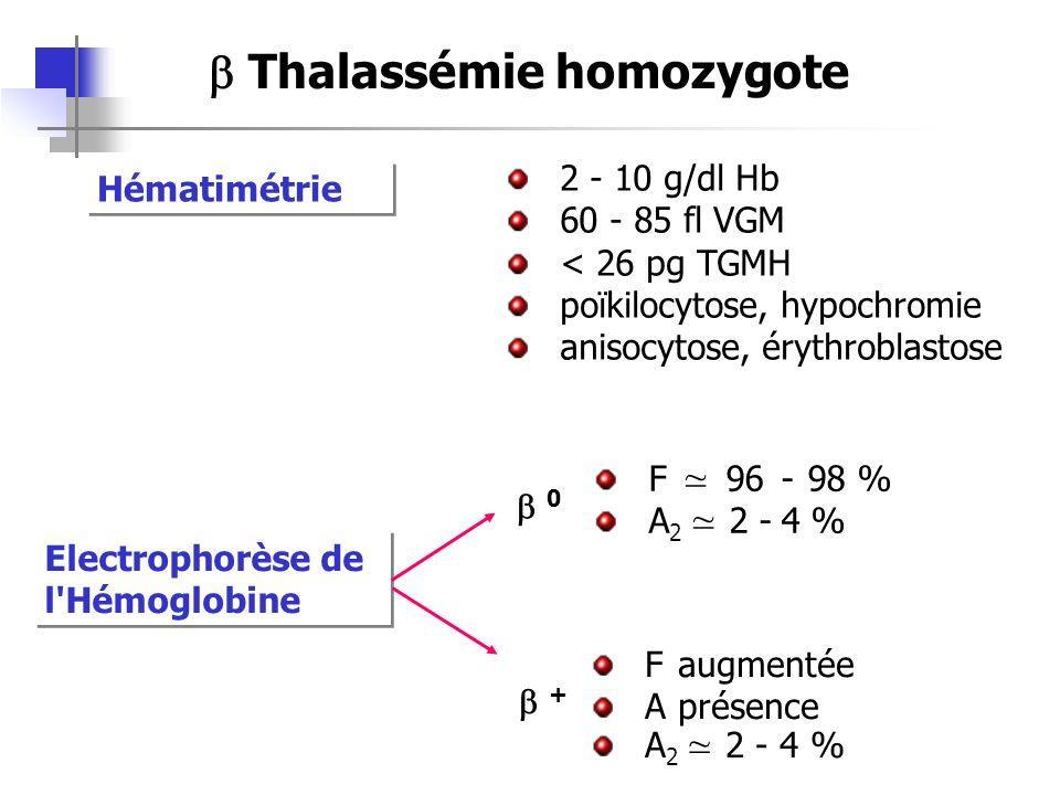 Hématimétrie 2 - 10 g/dl Hb 60 - 85 fl VGM < 26 pg TGMH poïkilocytose, hypochromie anisocytose, érythroblastose Electrophorèse de l'Hémoglobine 0 + F