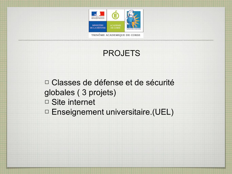 PROJETS Classes de défense et de sécurité globales ( 3 projets) Site internet Enseignement universitaire.(UEL)