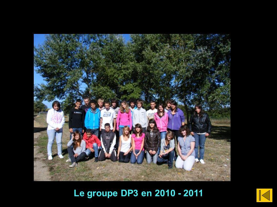 Le groupe DP3 en 2010 - 2011