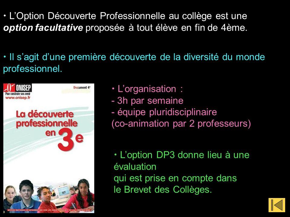 LOption Découverte Professionnelle au collège est une option facultative proposée à tout élève en fin de 4ème.