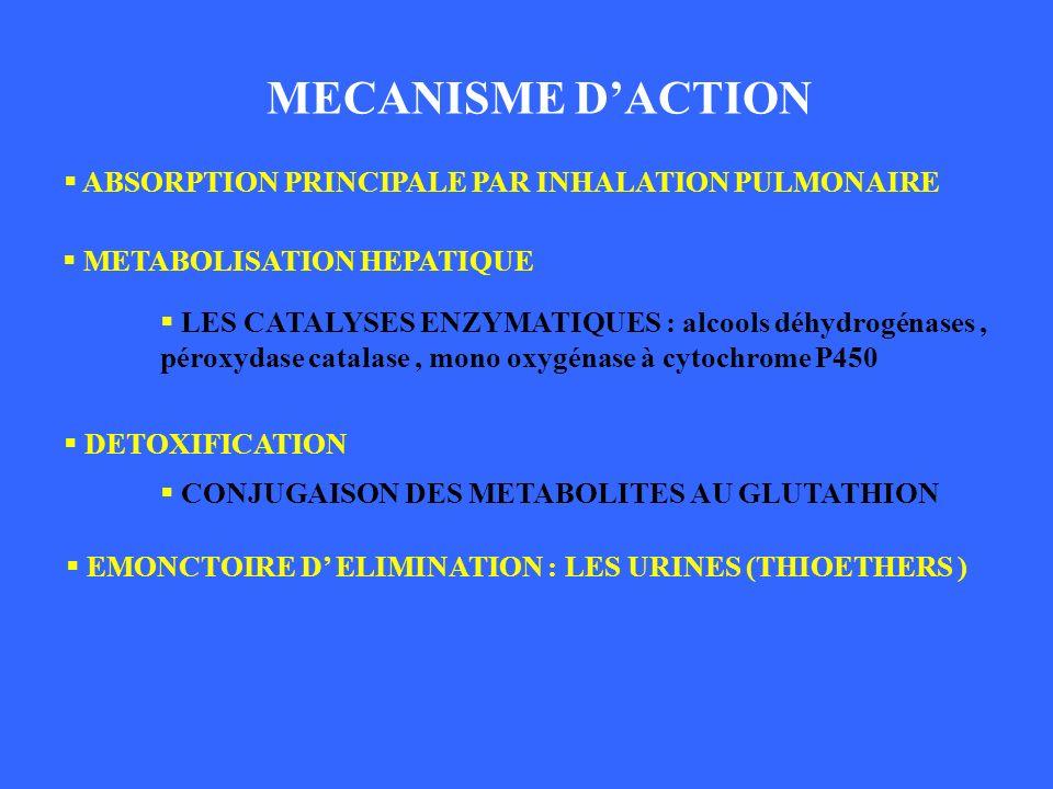 MECANISME DACTION ABSORPTION PRINCIPALE PAR INHALATION PULMONAIRE DETOXIFICATION MECANISME DACTION METABOLISATION HEPATIQUE LES CATALYSES ENZYMATIQUES