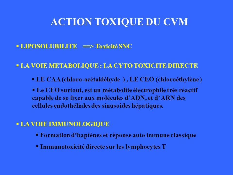 ACTION TOXIQUE DU CVM LIPOSOLUBILITE ==> Toxicité SNC LA VOIE METABOLIQUE : LA CYTO TOXICITE DIRECTE LE CAA (chloro-acétaldéhyde ), LE CEO (chloroéthy