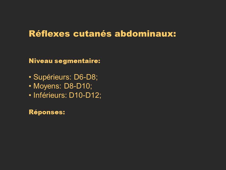 Réflexes cutanés abdominaux: Niveau segmentaire: Supérieurs: D6-D8; Moyens: D8-D10; Inférieurs: D10-D12; Réponses: