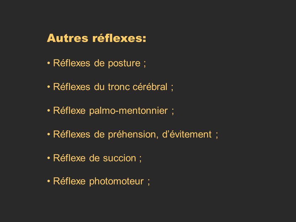 Autres réflexes: Réflexes de posture ; Réflexes du tronc cérébral ; Réflexe palmo-mentonnier ; Réflexes de préhension, dévitement ; Réflexe de succion