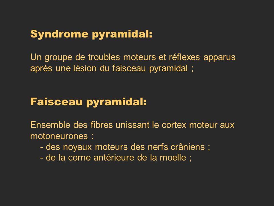 Syndrome pyramidal: Un groupe de troubles moteurs et réflexes apparus après une lésion du faisceau pyramidal ; Faisceau pyramidal: Ensemble des fibres