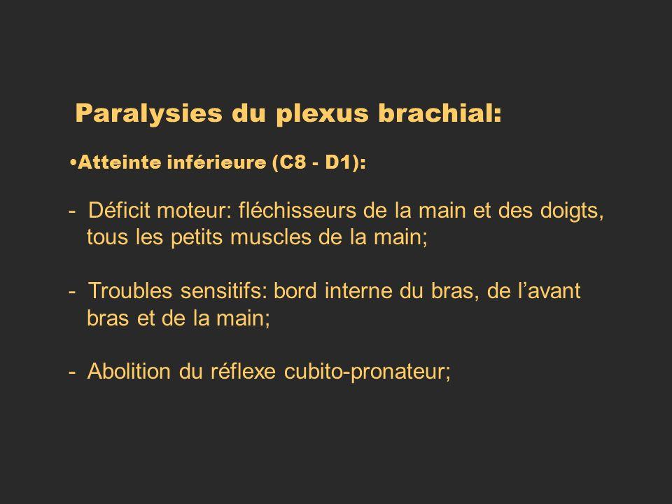 Paralysies du plexus brachial: Atteinte inférieure (C8 - D1): - Déficit moteur: fléchisseurs de la main et des doigts, tous les petits muscles de la m