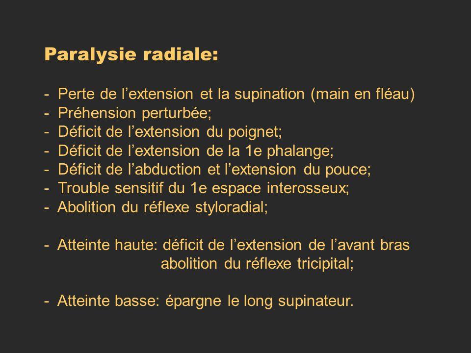 Paralysie radiale: - Perte de lextension et la supination (main en fléau) - Préhension perturbée; - Déficit de lextension du poignet; - Déficit de lex