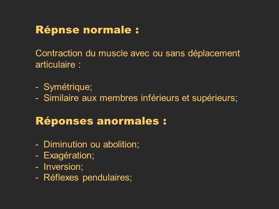 Répnse normale : Contraction du muscle avec ou sans déplacement articulaire : - Symétrique; - Similaire aux membres inférieurs et supérieurs; Réponses