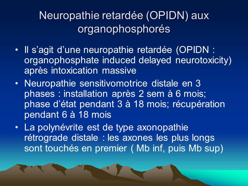 Neuropathie retardée (OPIDN) aux organophosphorés Il sagit dune neuropathie retardée (OPIDN : organophosphate induced delayed neurotoxicity) après intoxication massive Neuropathie sensitivomotrice distale en 3 phases : installation après 2 sem à 6 mois; phase détat pendant 3 à 18 mois; récupération pendant 6 à 18 mois La polynévrite est de type axonopathie rétrograde distale : les axones les plus longs sont touchés en premier ( Mb inf, puis Mb sup)