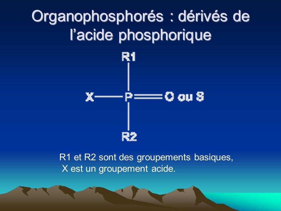 Organophosphorés : dérivés de lacide phosphorique R1 et R2 sont des groupements basiques, X est un groupement acide.